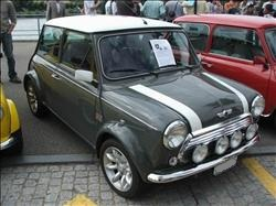 yukon grey mini