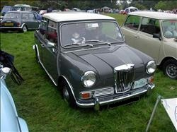 riley elf yukon grey mini